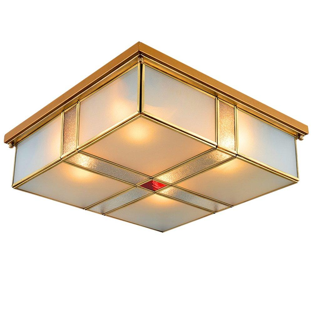 Customized Ceiling Light (EOX-14112-460)