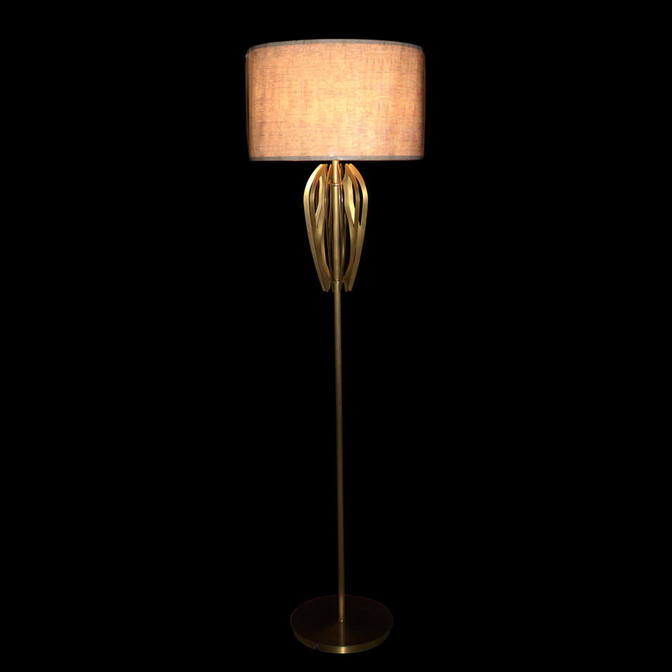 Concise Design Floor Lamp (D480 H1750-1)